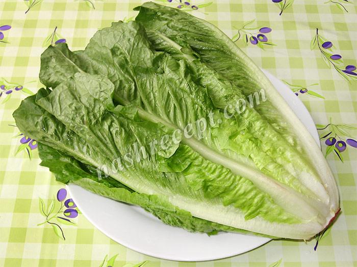 салат романо (римский салат) - salat romano (rimskiy salat)
