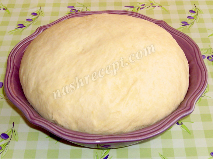 дрожжевое сдобное тесто для пирогов, пирожков и рулетов - drozhzhevoe sdobnoe testo dlya pirogov, pirozhkov i ruletov