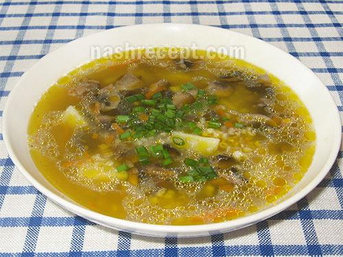 грибной суп с ячкой - gribnoy sup s yachkoy