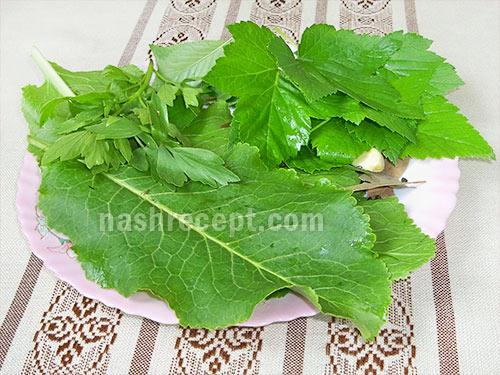 зелень для засолки огурцов - zelen dlya zasolki ogurtsov