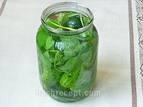 огурцы и зелень укладываем в банки - ogurtsy i zelen ukladyvaem v banki