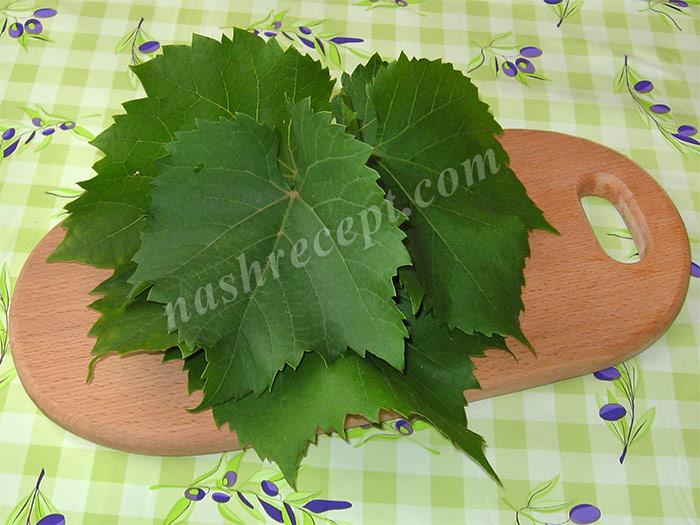 виноградные листья для долмы - vinogradnye listya dlya dolmy