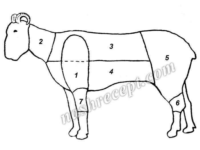 разделка бараньей туши (схема) - razdelka baranyey tushi (shema)