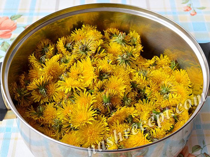 одуванчики для варенья - oduvanchiki dlya varenia