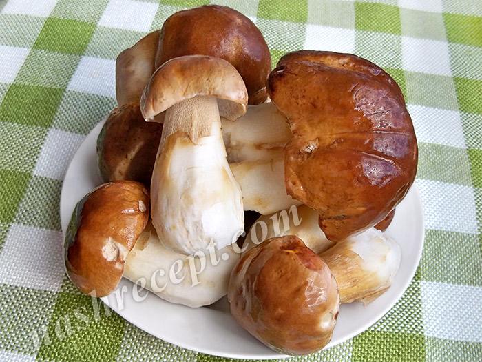 белые грибы моем и чистим - belye griby moem i chistim