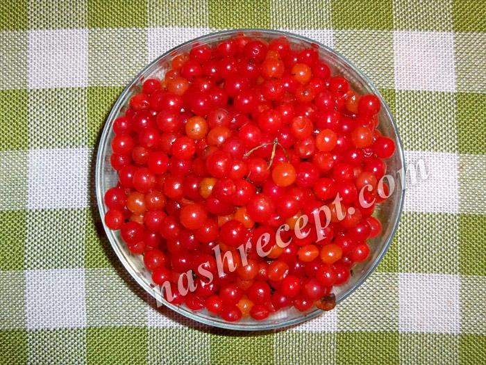 ягоды калины обрываем с веток